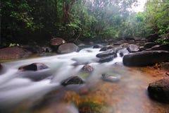 Rzeka w lesie Obraz Stock