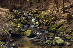 Rzeka w lesie - HDR Fotografia Stock