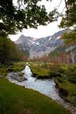Rzeka w lesie obok gór fotografia stock