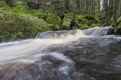 Rzeka w lesie, Sumava Obrazy Royalty Free