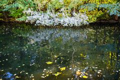 rzeka w miastowym parku w jesień dniu zdjęcie royalty free