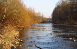 Rzeka w naturze Obrazy Royalty Free