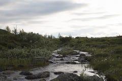Rzeka w Norweskim parka narodowego terenie górskim Obrazy Stock