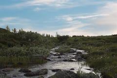 Rzeka w Norweskim parka narodowego terenie górskim Obrazy Royalty Free
