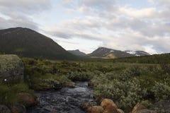 Rzeka w Norweskim parka narodowego terenie górskim Zdjęcia Stock