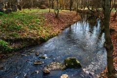 Rzeka w parkprospect Obraz Royalty Free