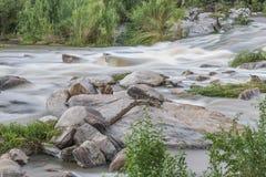 Rzeka w Południowa Afryka Zdjęcia Royalty Free