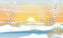 Rzeka w wiośnie Śnieżny stapianie Brzoz drzewa bez liści royalty ilustracja