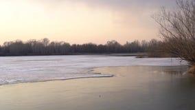 Rzeka w wiośnie przy zmierzchem zbiory wideo