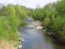 Rzeka w wiosna lesie Zdjęcie Royalty Free