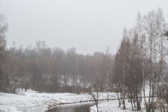 Rzeka w wiosna lesie w mgle Zdjęcie Stock