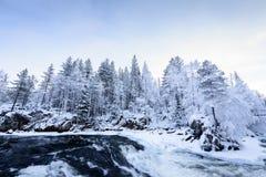 Rzeka w zima sezonie przy Oulanka parkiem narodowym, Finlandia zdjęcia royalty free