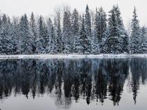Rzeka w zimie zdjęcia stock