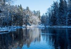 Rzeka w zimie zdjęcie royalty free