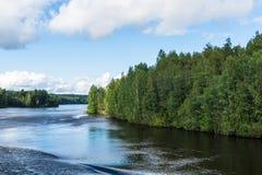 Rzeka wzdłuż brzoza lasów Zdjęcie Stock