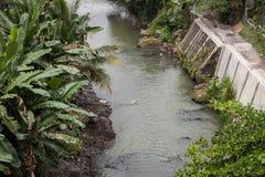 Rzeka z bananowego drzewa liściem na bocznej fotografii w jogja Indonesia Zdjęcie Royalty Free