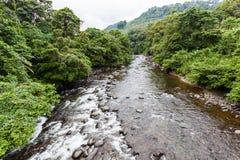 Rzeka z czystym i krystalicznym - jasna woda Fotografia Royalty Free