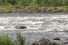 Rzeka z drzewami i skałami Fotografia Royalty Free