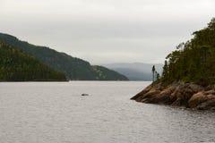 Rzeka z fjords na chmurnym dniu Obrazy Royalty Free