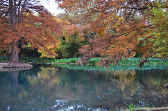 Rzeka z jesieni drzewami Zdjęcia Royalty Free