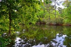 Rzeka z odbiciami Zdjęcia Royalty Free