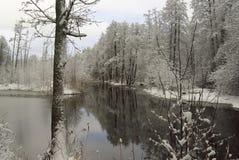 Rzeka z odbiciami drzewa zakrywający z śniegiem zdjęcie stock