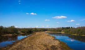 Rzeka z trawą Zdjęcia Royalty Free