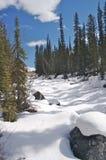 rzeka zakrywający śnieg Fotografia Royalty Free