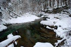 rzeka zielony śnieg Zdjęcie Royalty Free