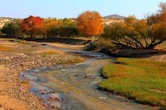 rzeki Zdjęcie Stock