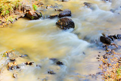 rzeki Zdjęcie Royalty Free