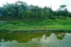 Rzeki i zieleń krajobraz Obrazy Royalty Free