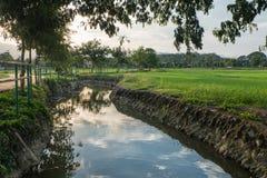 Rzeki i zieleni pola Zdjęcia Stock