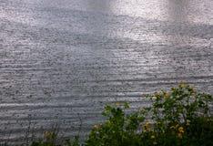 Rzeki powierzchnia z deszcz kroplami na nim zdjęcia royalty free