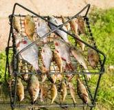Rzeki ryba na grillu Obrazy Stock