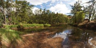 Rzeki strona Zdjęcia Stock