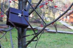 Rzemienna brown teczka przy rowan bagażnikami Fotografia Royalty Free