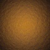 rzemienna brunatnożóła tekstura Obraz Royalty Free