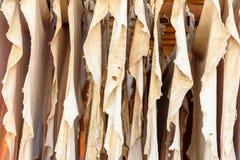 Rzemienna osuszka w garbarni fez Morocco Zdjęcia Royalty Free