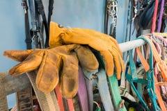 Rzemienna rękawiczka dla ochrony Obrazy Stock