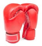 Rzemienne bokserskie rękawiczki odizolowywać fotografia royalty free