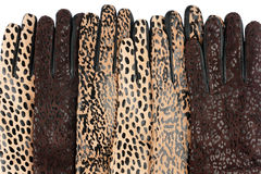 rzemienne rękawiczek kobiety Fotografia Stock