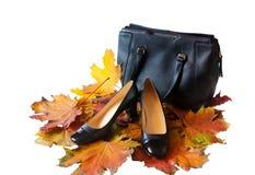 Rzemienni buty i torba z jesień liśćmi odizolowywającymi na bielu Zdjęcie Royalty Free