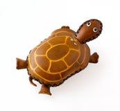 Rzemienny żółw Obrazy Royalty Free
