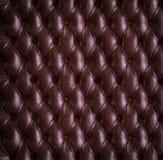rzemienny luksus Fotografia Stock