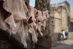 Rzemienny obwieszenie suszyć na linii w Marrakech garbarni Zdjęcia Stock