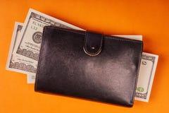 Rzemienny portfel z my dolary na barwionym papierowym tle obraz stock