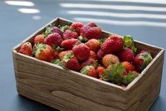 Rzemiosła pudełko świeże organicznie truskawki w słońca światła bocznym widoku fotografia stock