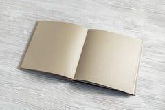 Rzemiosło papierowa broszura obraz stock