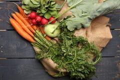 Rzodkiew, kalarepy i marchewki na, drewnianym tle i jutowej torbie Fotografia Stock